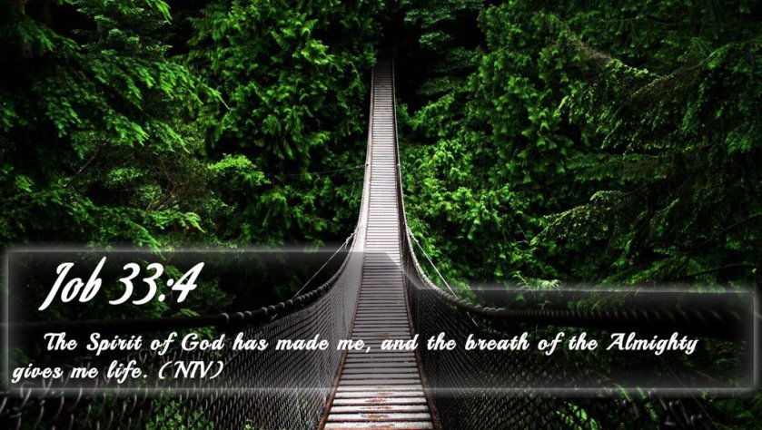 job_33_4___bible_verse_quote_by_bible_quote-d7kpa8p