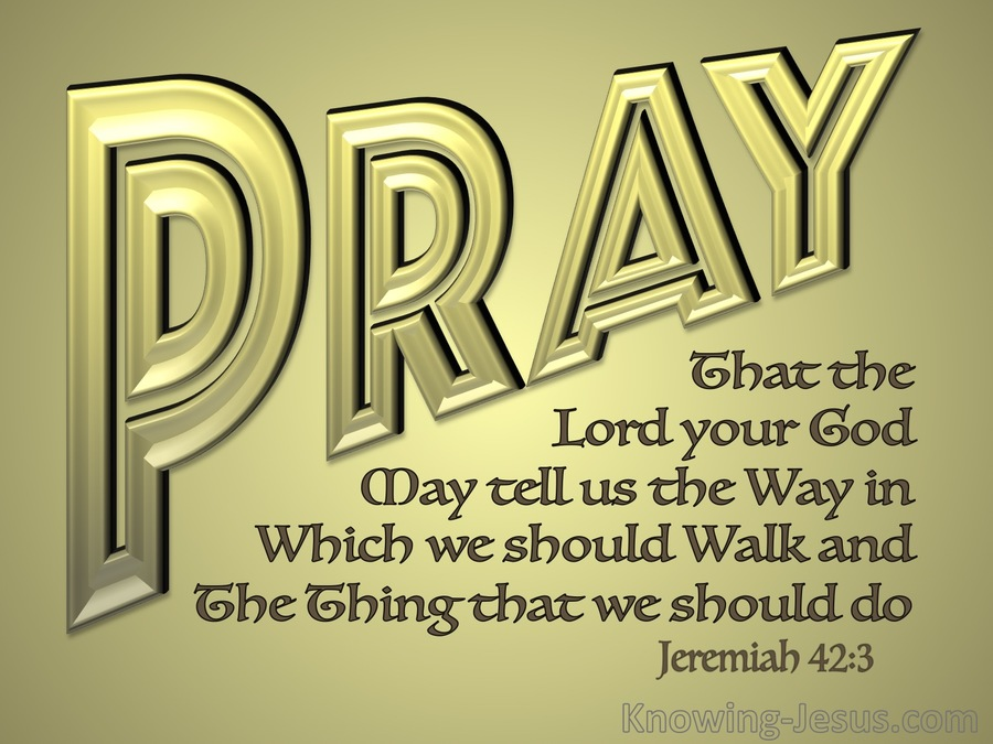 Jeremiah 42-3 Pray That The Lord May Shoe Us The Way gold