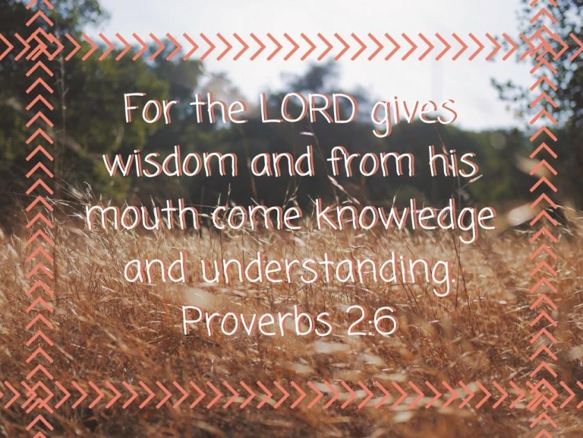Proverbs 2-6