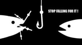 bait stop falling for it
