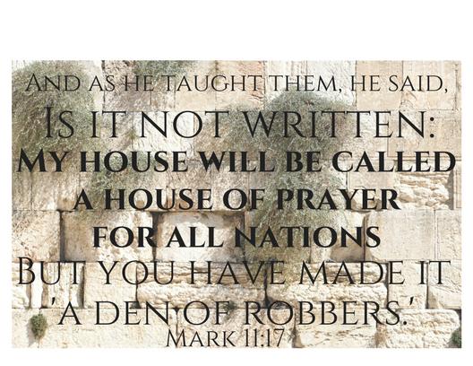 Mark 11 17