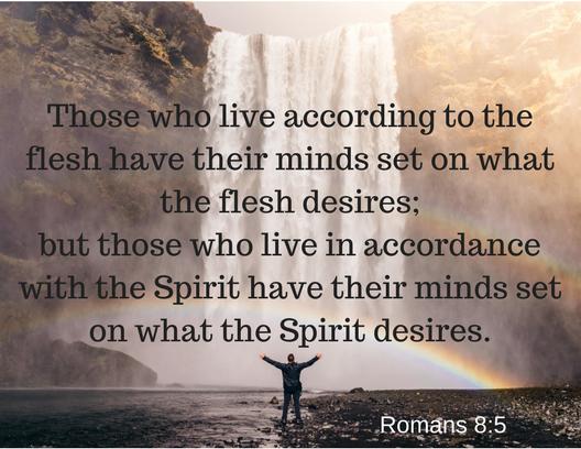 Romans 8-5