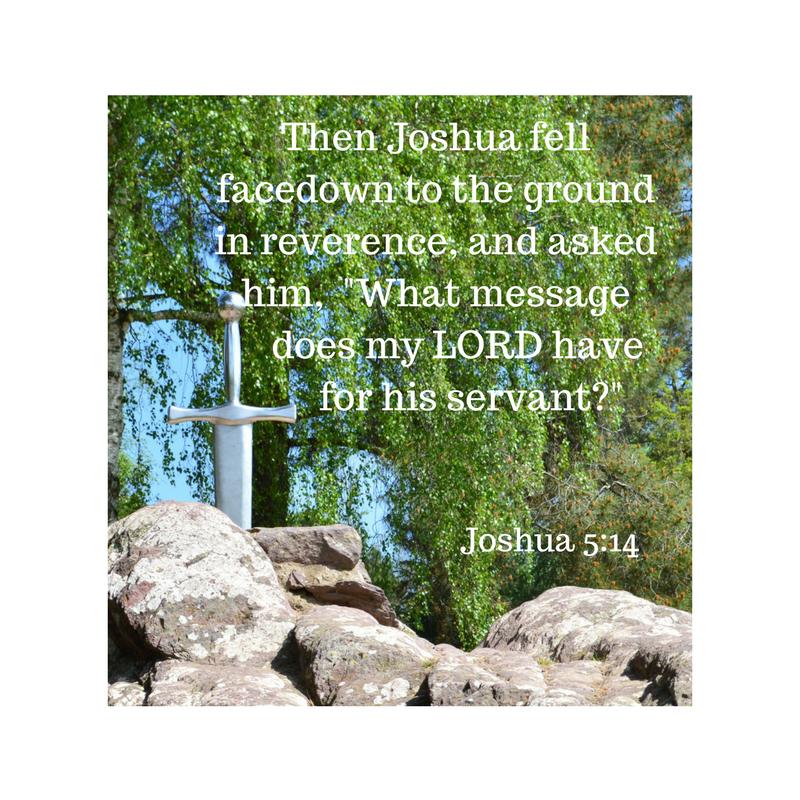 Joshua 5 14 (1)