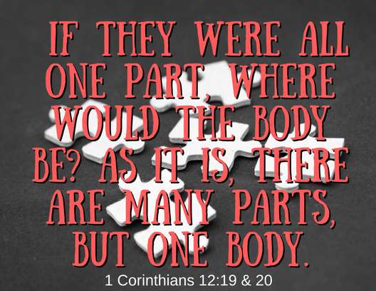 1 Corinth 12 19,20 revised
