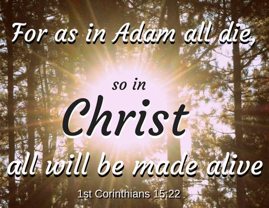 1 Corinthians 15 22