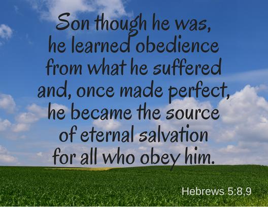 Hebrews 5_8,9