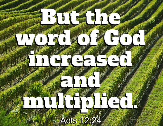 Acts 12 24
