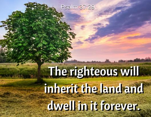 psalm 37 29