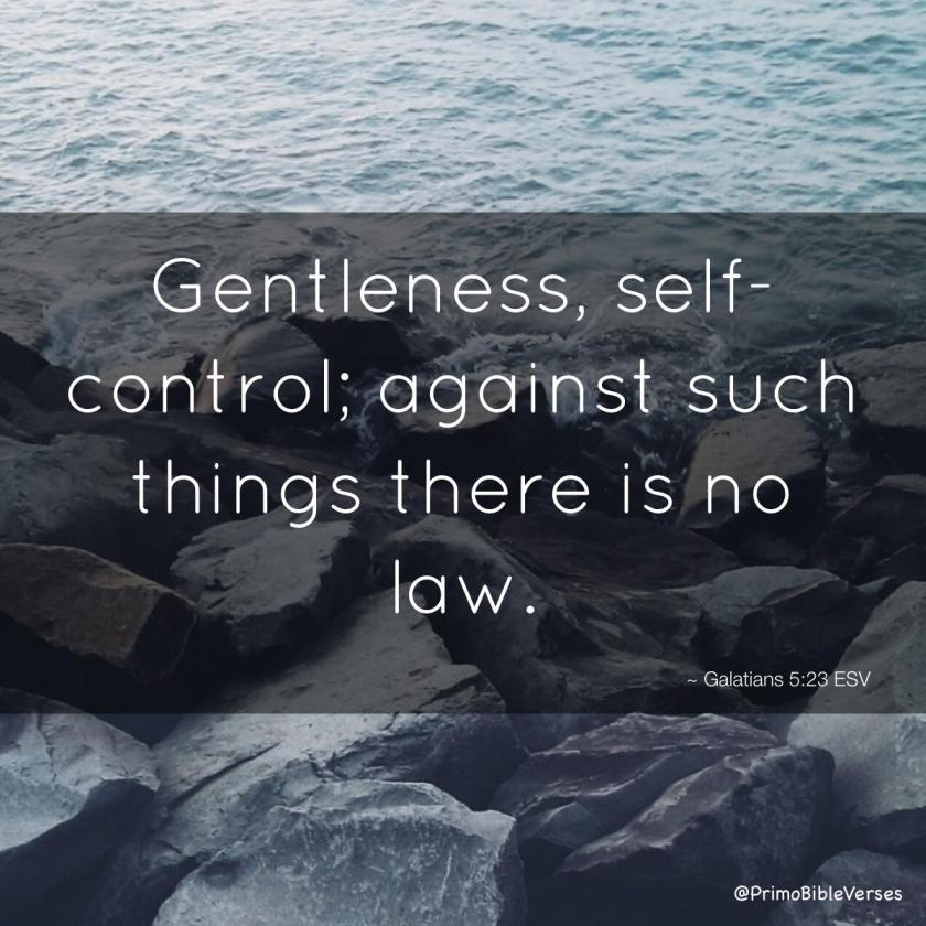 gentleness-self-control-against-such-things-there-is-no-law-esv copy