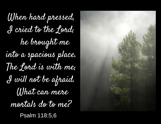 psalm 118 5 6