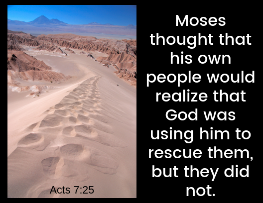 acts 7 25