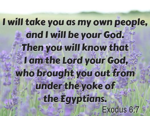 exodus 6 7