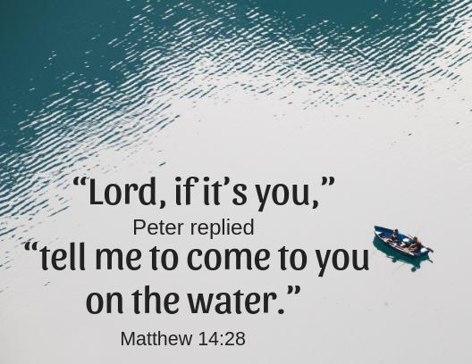 Matt 14 28
