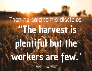 "then he said to his disciples, ""the harvest is plentiful but the workers are few."