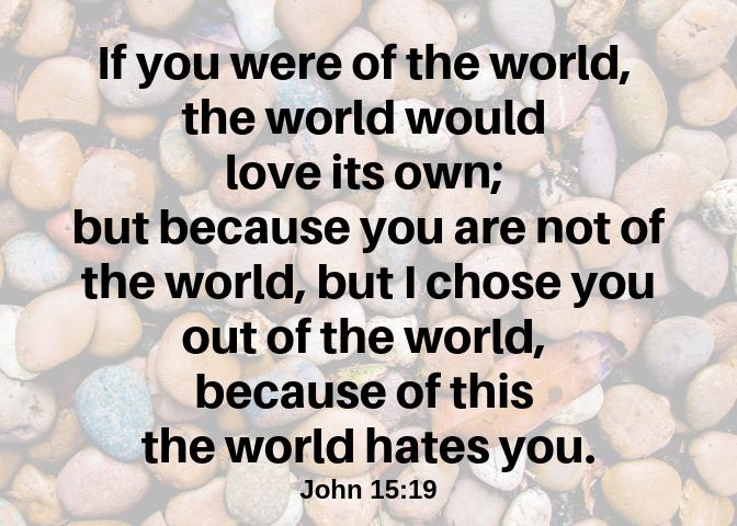 John 15 19