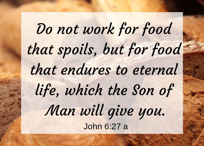 John 6 27 a