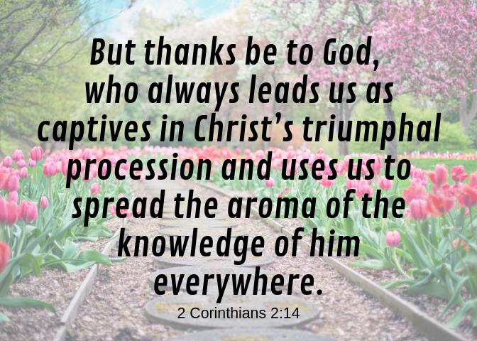 2 Corinthians 2 14