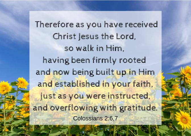 Colossians 2 6 7