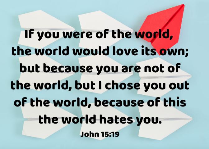 John 15 19 (1)