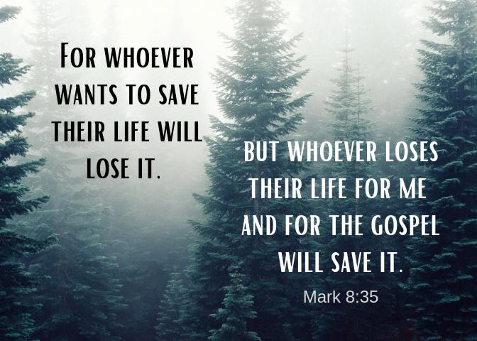 Mark 8 35