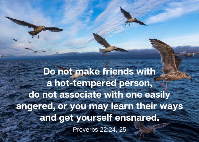 Proverbs 22 24 25