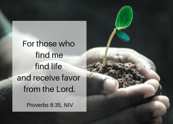 Proverbs 8 35 NIV