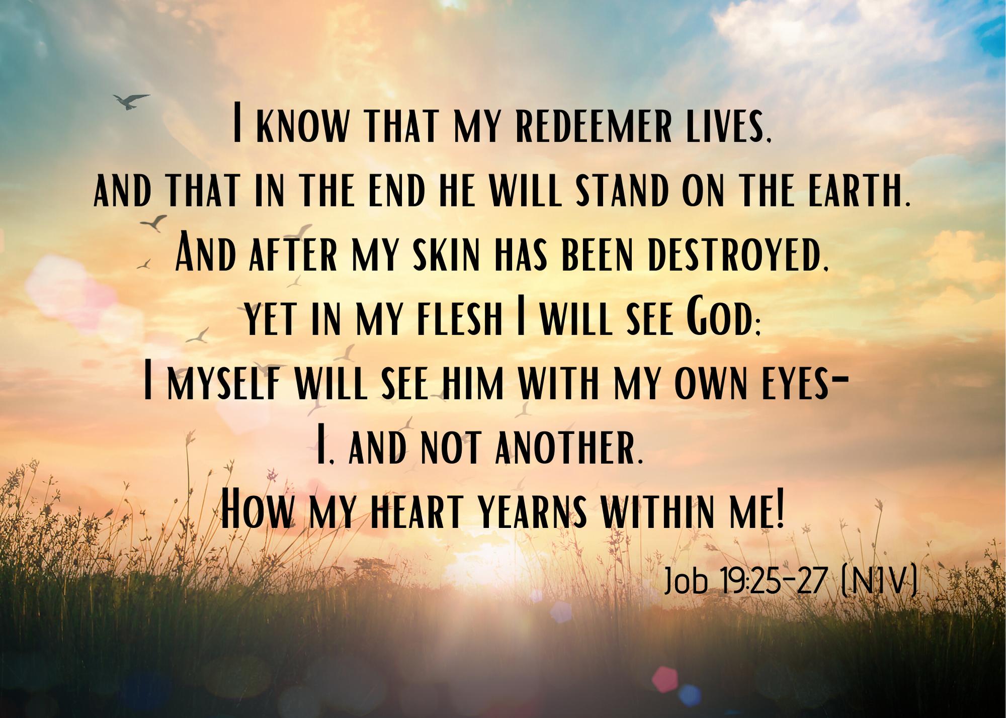 Job 19 25 27 NIV (1)