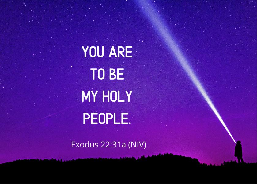 Exodus 22 31 a NIV
