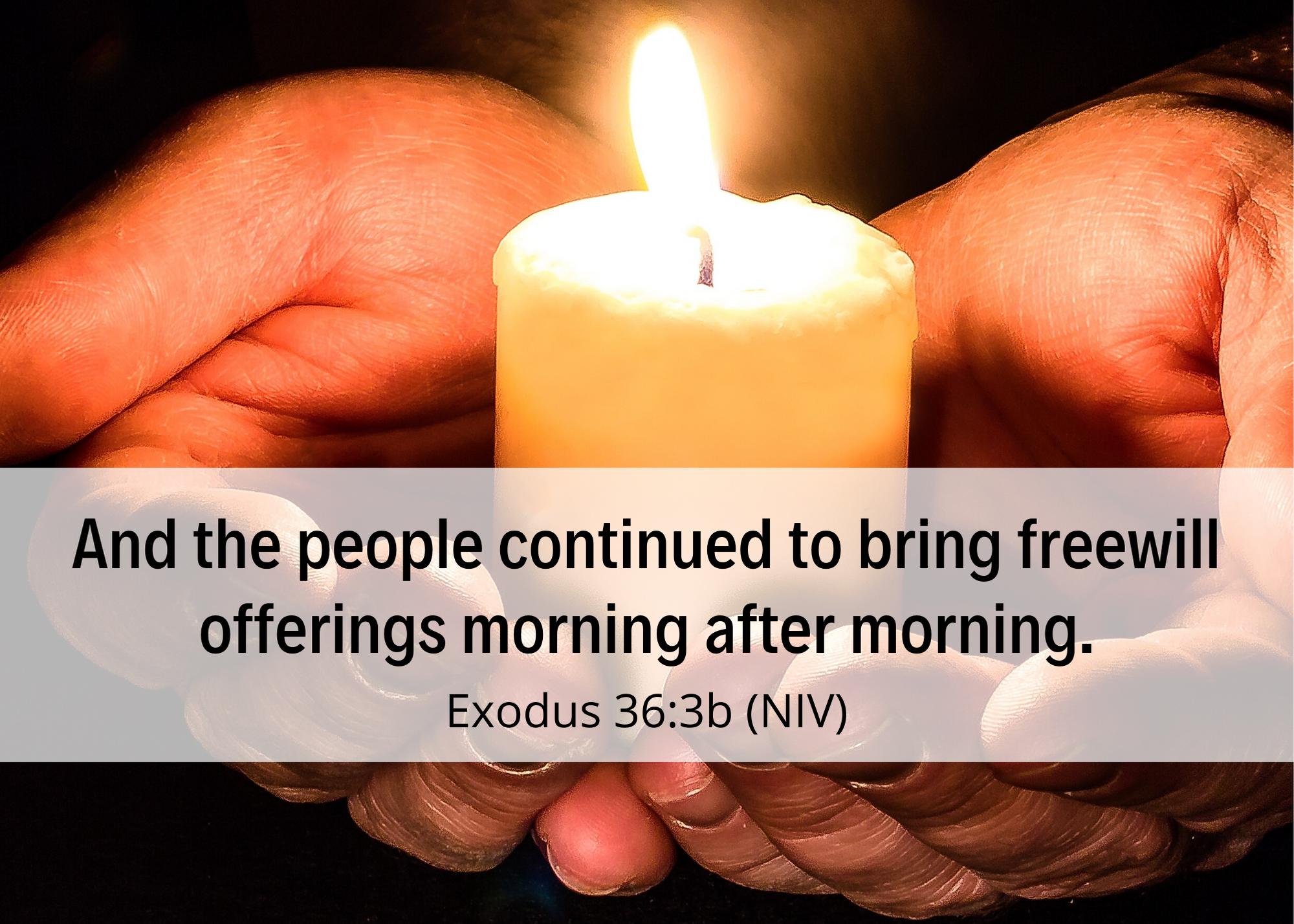 Exodus 36 3b NIV