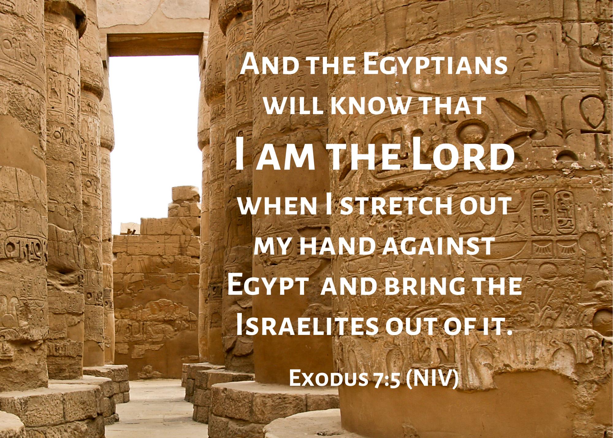 Exodus 7 5 NIV