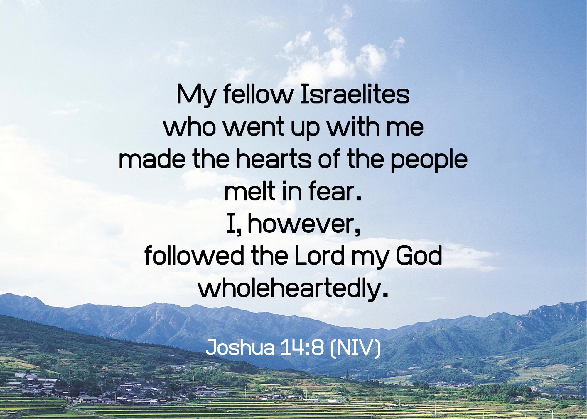 Joshua 14 8 NIV