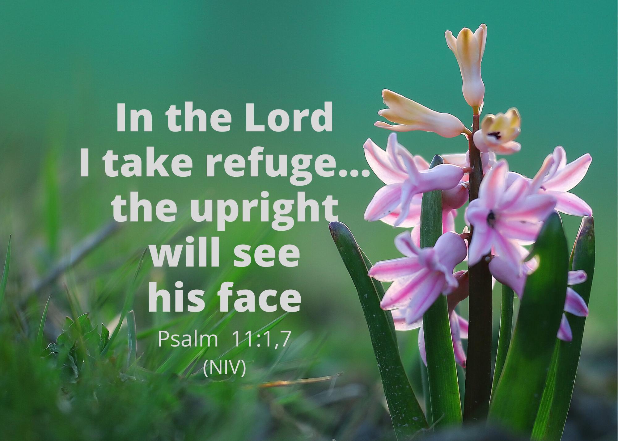 Psalm 11 1 7 NIV