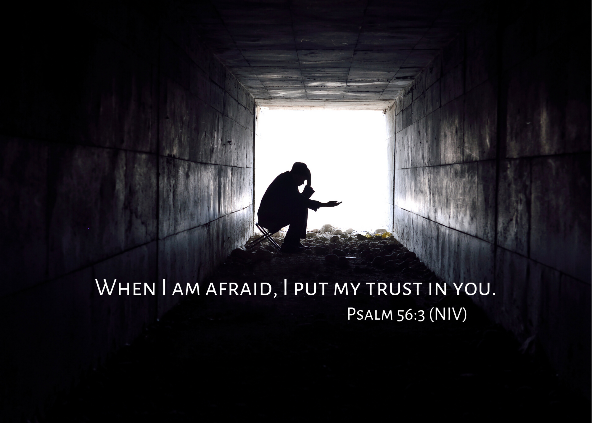 Psalm 56 3 NIV