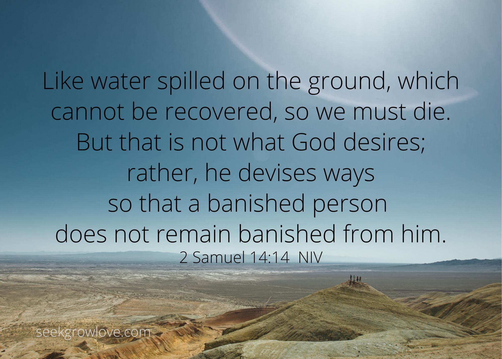 2 Samuel 14 14 NIV sgl