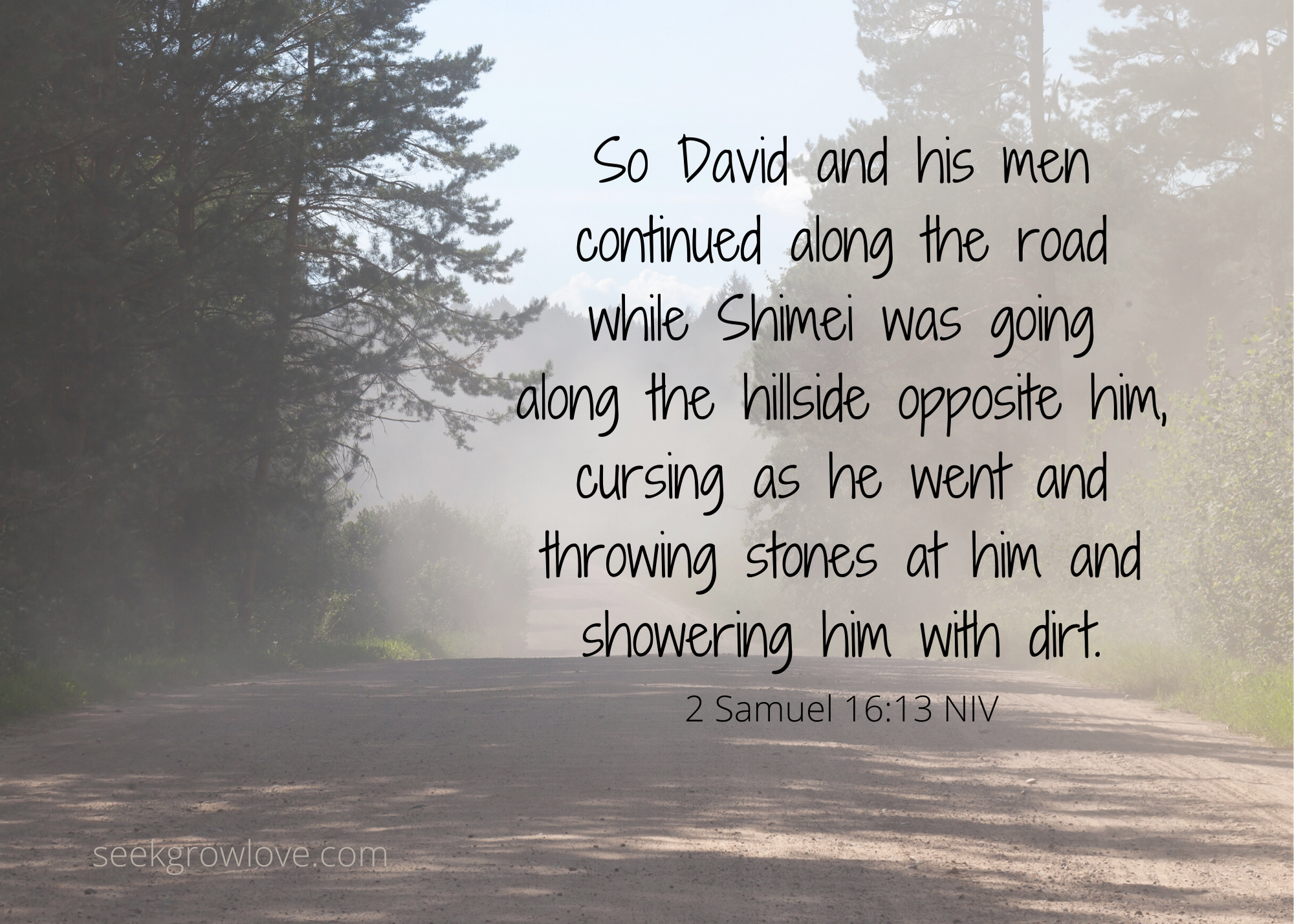 2 Samuel 16 18 NIV sgl