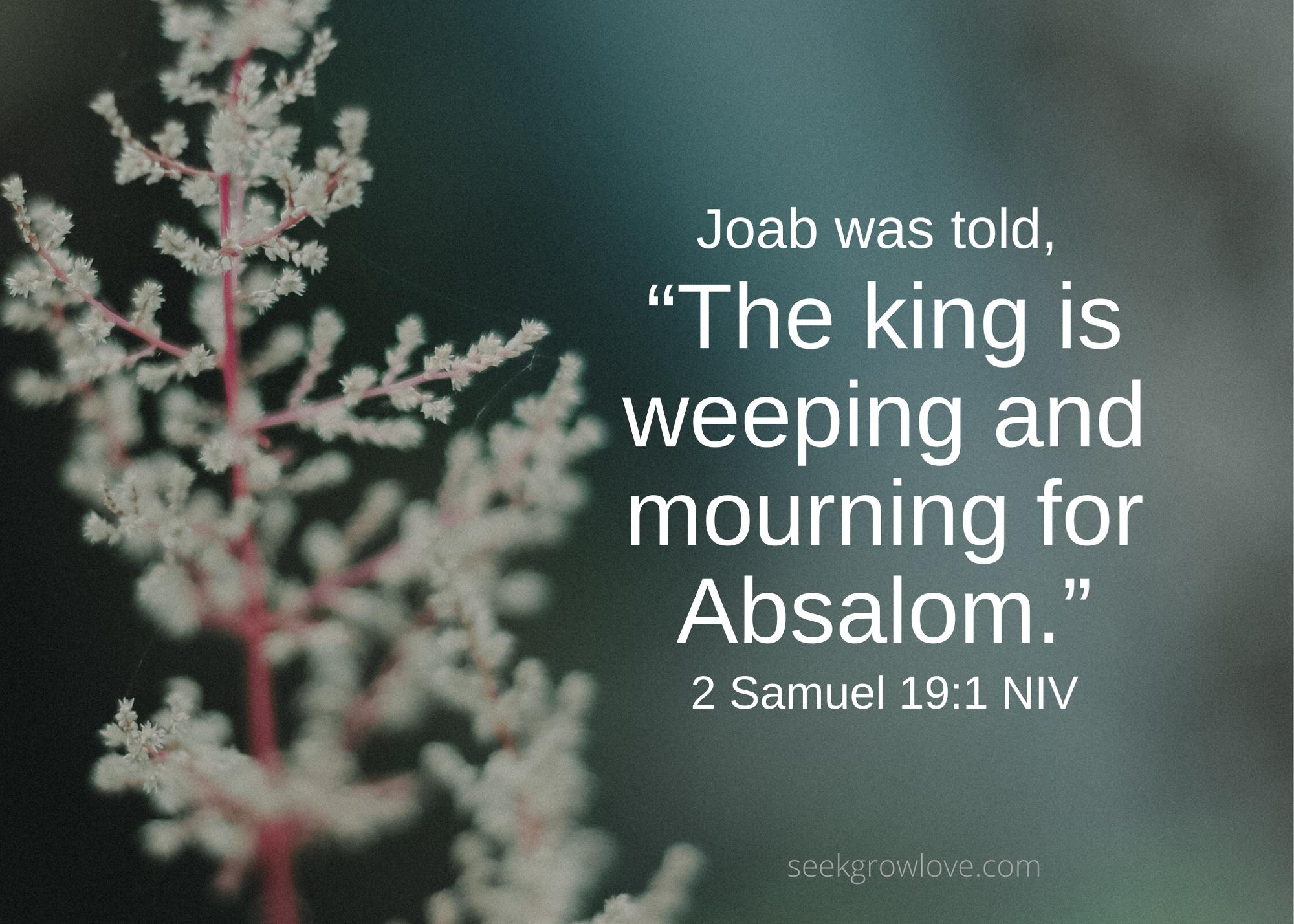 2 Samuel 19 1 NIV sgl