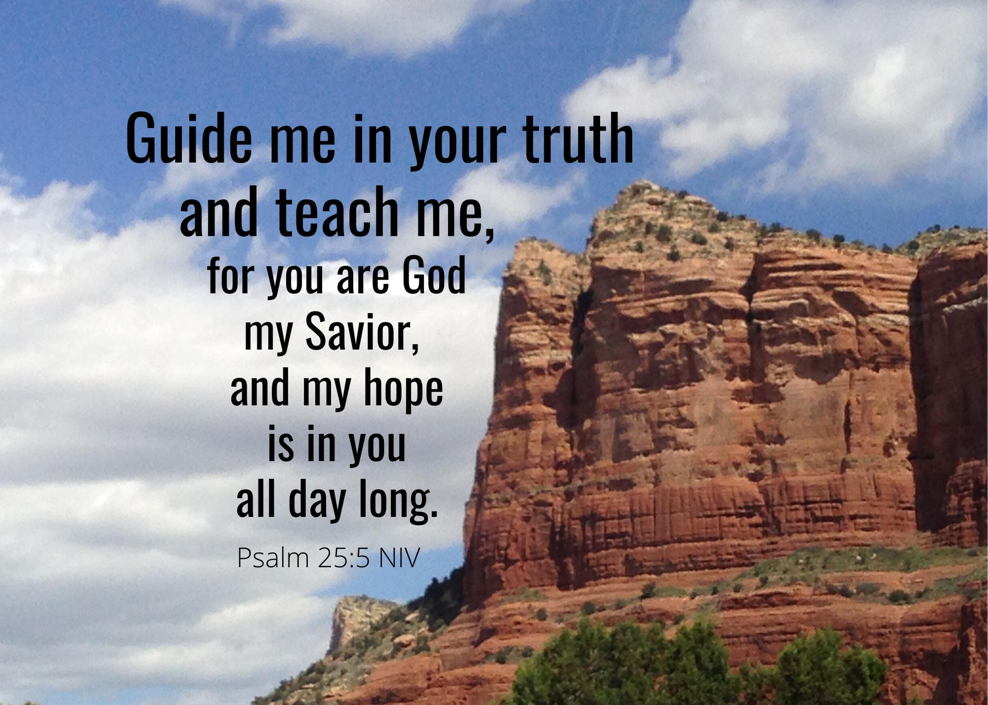 Psalm 25 5 NIV