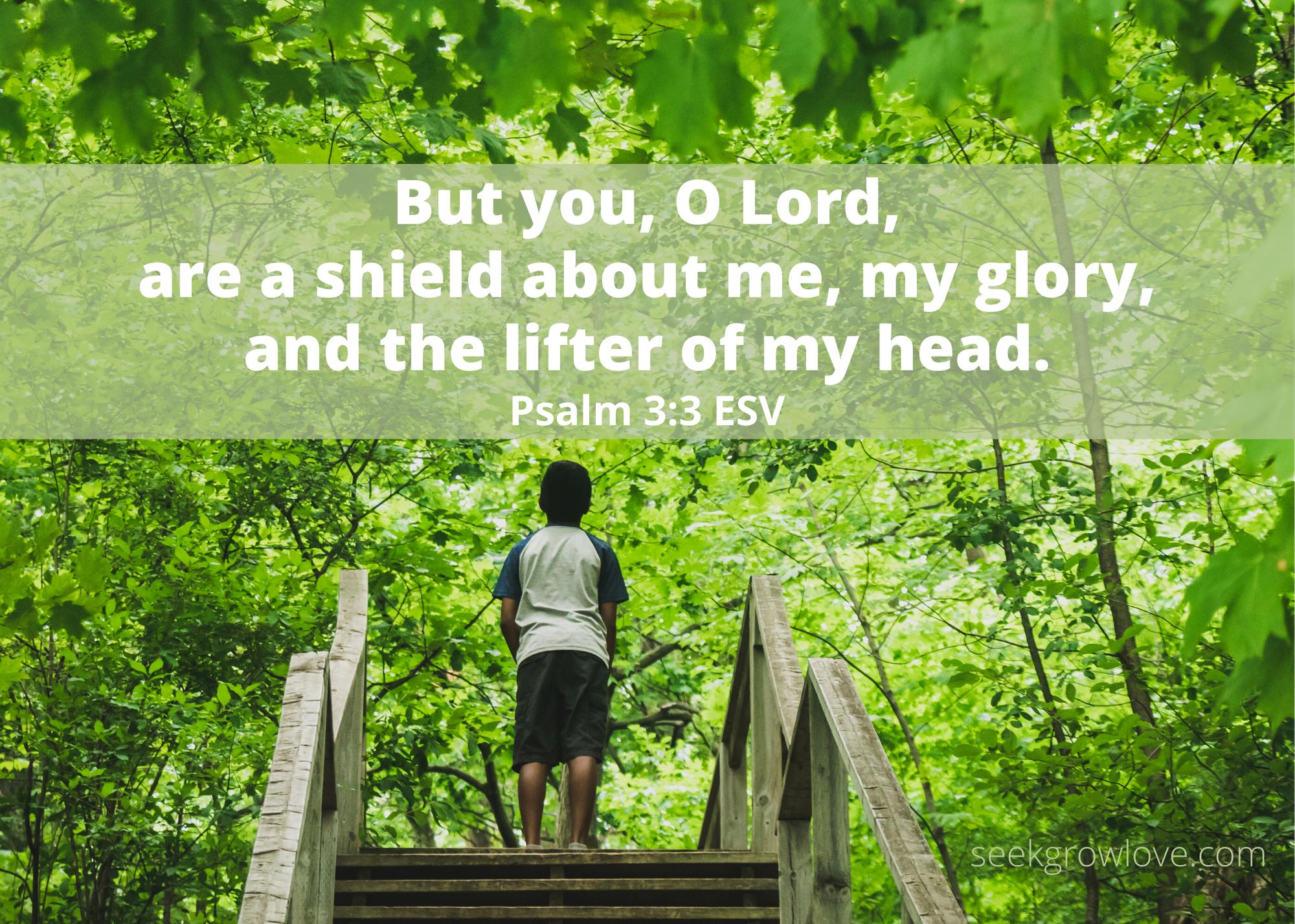 Psalm 3 3 ESV