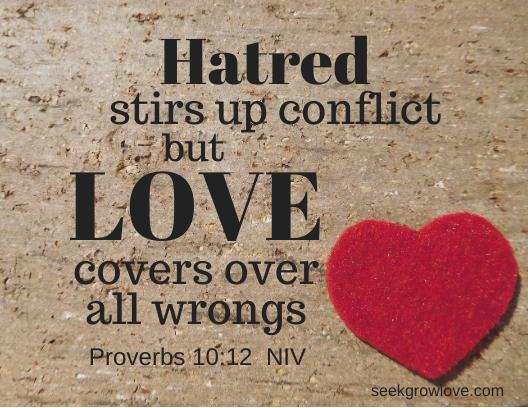 Proverbs 10 12 NIV sgl