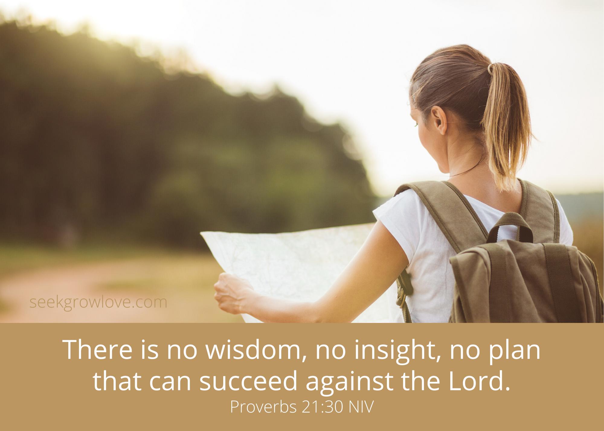 Proverbs 21 30 NIV sgl