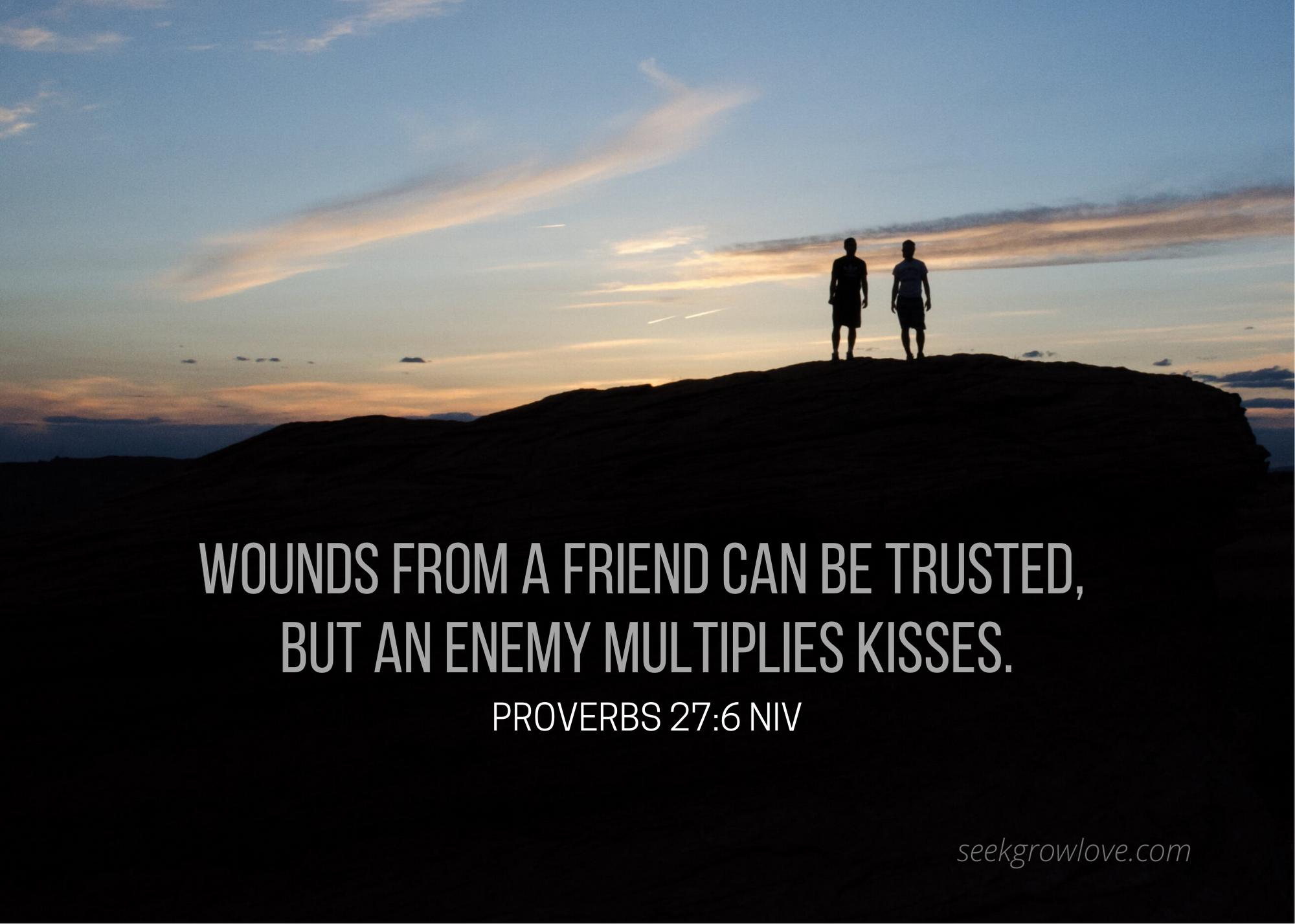 Proverbs 27 6 NIV sgl
