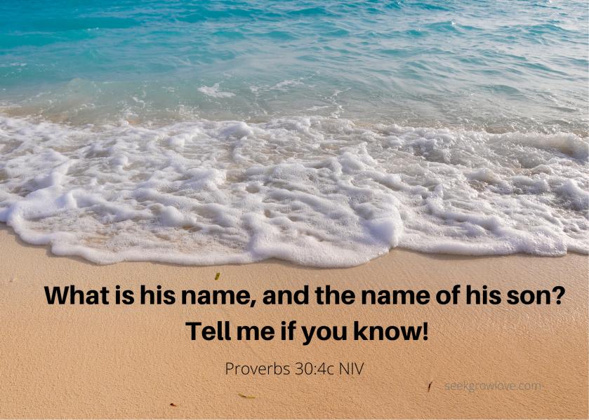 Proverbs 30 4c NIV sgl