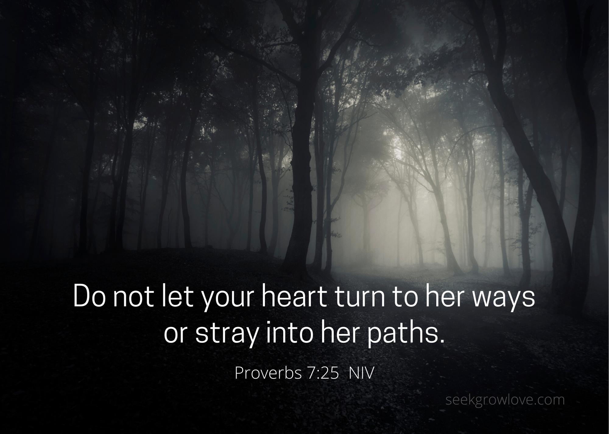 Proverbs 7 25 NIV sgl