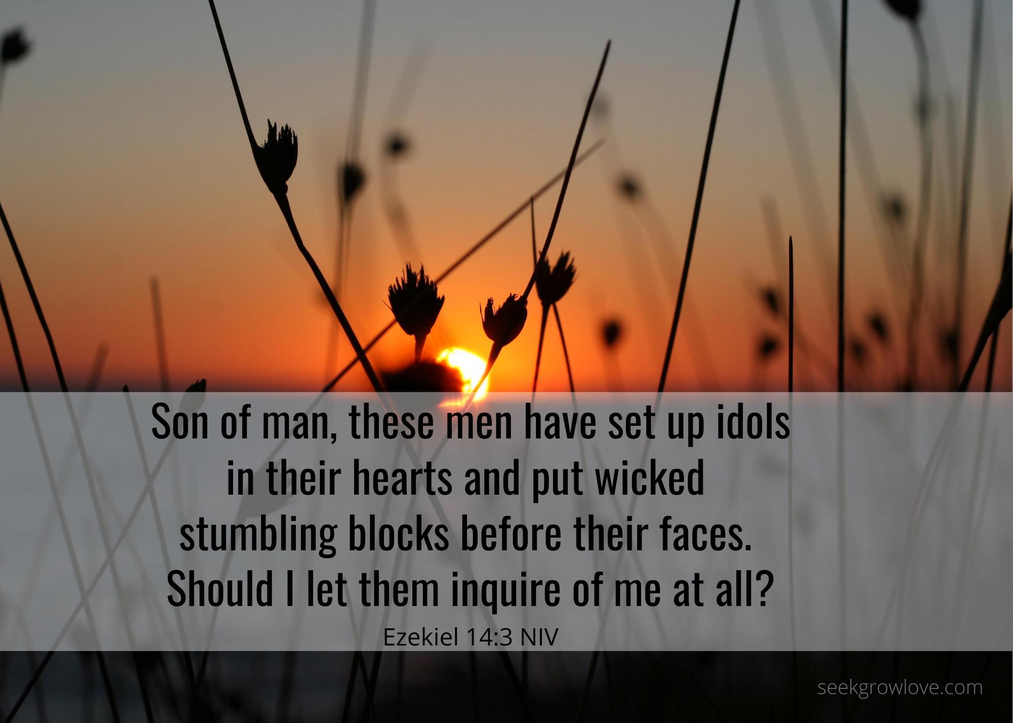 Ezekiel 14 3 NIV SGL