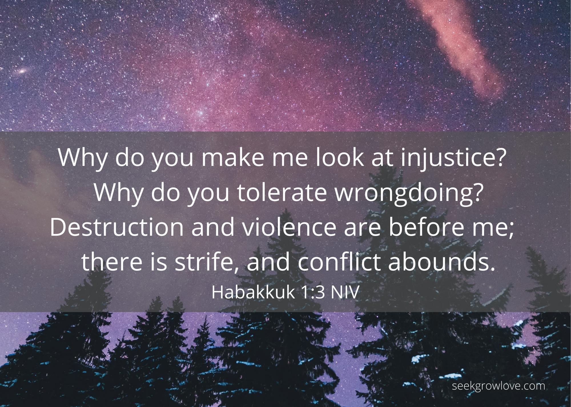 Habakkuk 1 3 NIV sgl