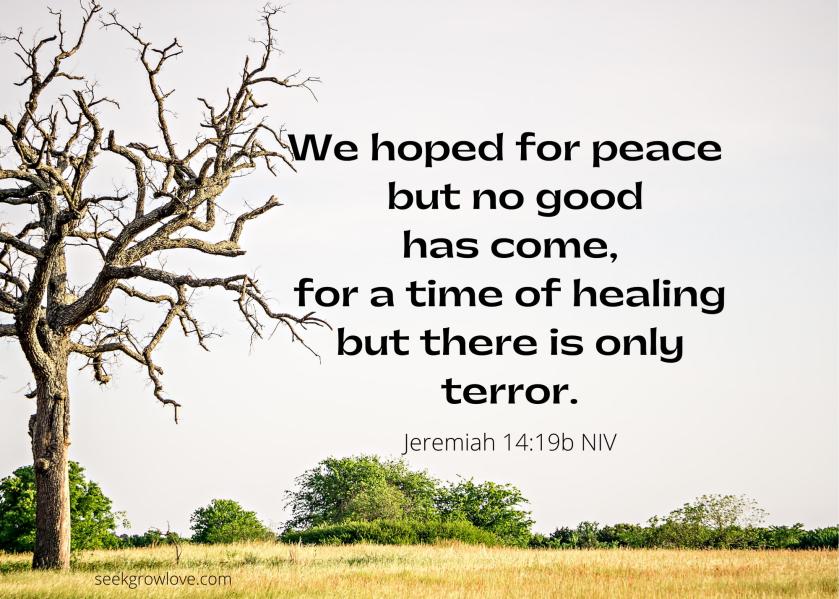 Jeremiah 14 19 b NIV sgl