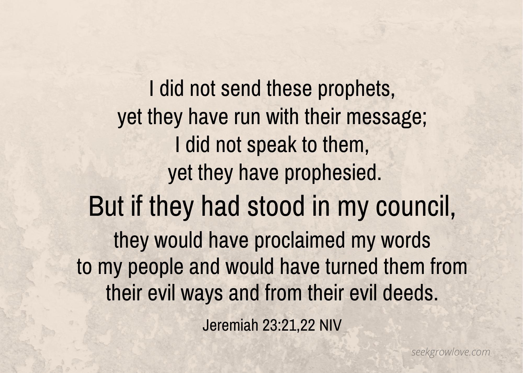 Jeremiah 23 21 22 NIV sgl
