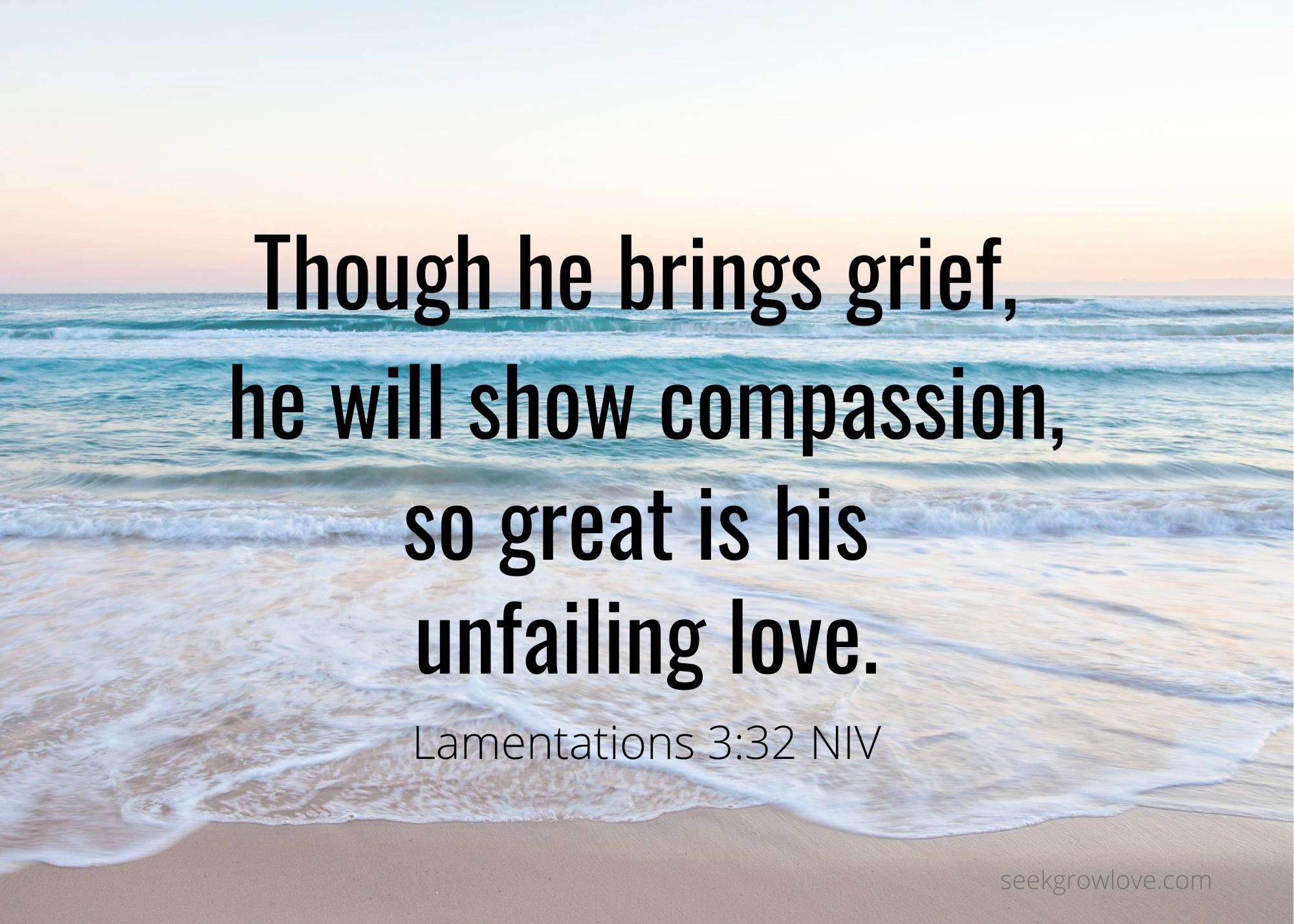 Lamentations 3 32 NIV sgl